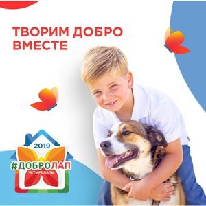 1 августа стартовала V ежегодная благотворительная акция «Добролап»