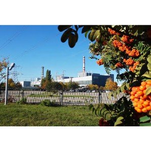 Экологические затраты Курской АЭС в 2018 году составили 526,6 млн рублей