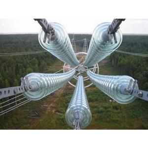 На магистральных ЛЭП Курской области установлены новые стеклянные изоляторы