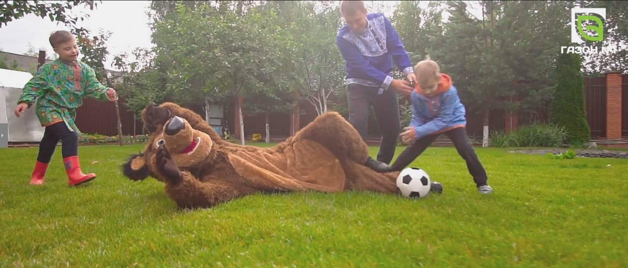 Медведь уложил рулонный газон на участке Эвелины Блёданс
