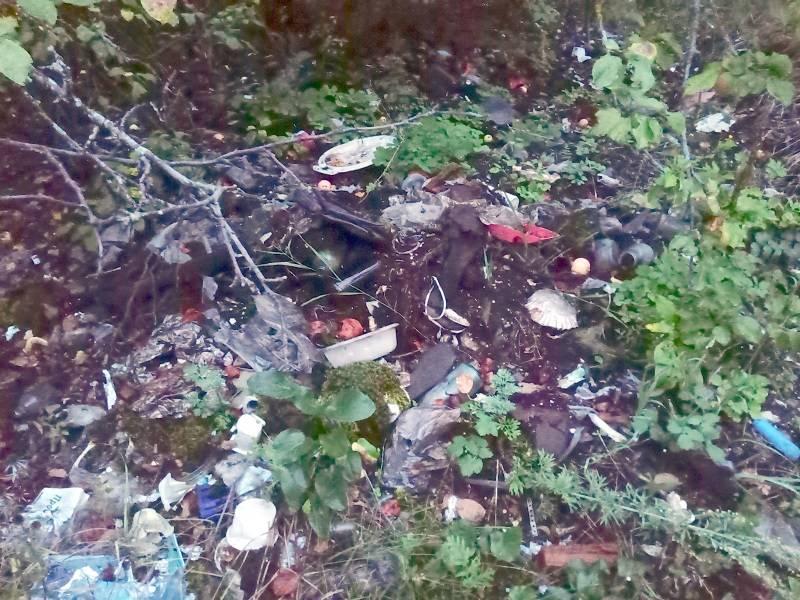 Активисты ОНФ в Мордовии просят власти двух районов убрать свалки