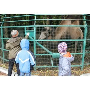 Маленькие пациенты психбольницы посетили зоопарк