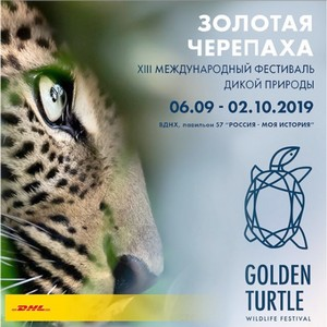 DHL Express доставит призы победителям фестиваля дикой природы Золотая черепаха