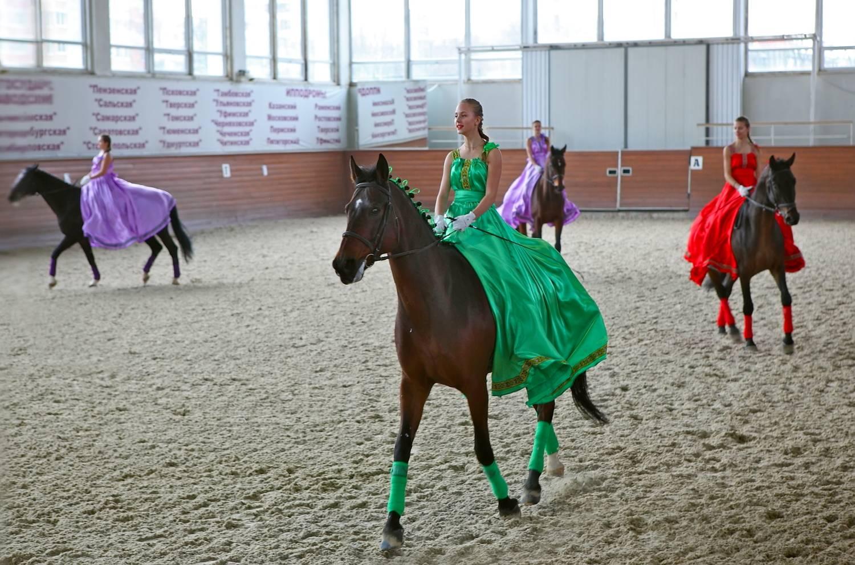 Где покататься на лошадях в Подмосковье