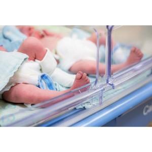 В Минтруде рассчитывают на сохранение темпов роста рождаемости в Ингушетии