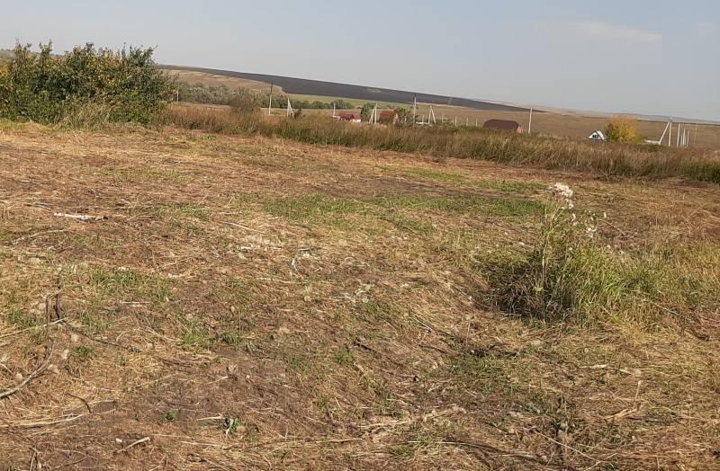 ОНФ в Мордовии помог фермеру из Лямбирского района убрать навалы древесины