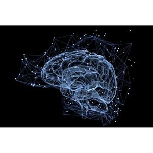 Нейросети научили находить вызванные ультрафиолетом повреждения ДНК