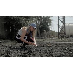 Новый вектор агрохимических исследований