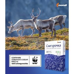 Mondi и WWF России: сохранение дикого северного оленя