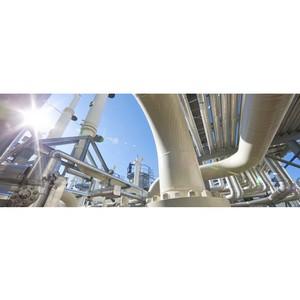 Газовый рынок может стать глобальным после роста доли СПГ до 50-70%