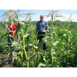 В Крыму стартовал отбор проектов по господдержке начинающих фермеров