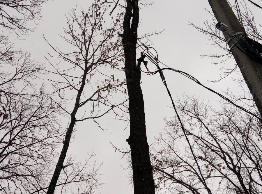 ОНФ в Мордовии обратил внимание властей на опасные электропровода