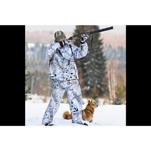 В Кировской области изменят правила натаски и нагонки охотничьих собак