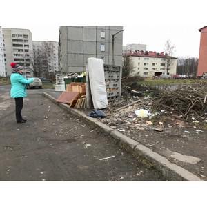 ОНФ: власти Петрозаводска наводят порядок на контейнерных площадках