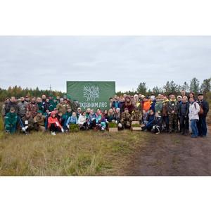 Итоги акции «Живи, лес!» в Поморье
