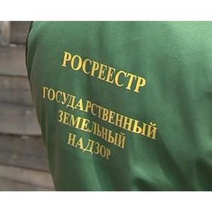Челябинским Управлением Росреестра выявлено почти 6 тысяч нарушений