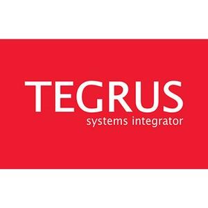 Tegrus стал официальным партнером MerliOnCloud
