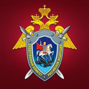 15 января - День образования Следственного комитета России