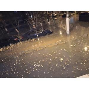 Воронежская Венеция: ОНФ обсудит с властями проблему тонущих дворов