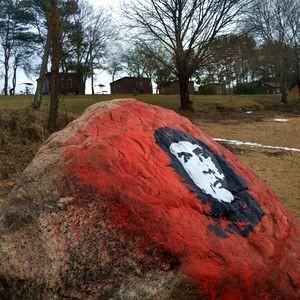 На берегу Можайского водохранилища появился целительный камень