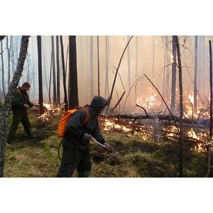 53 единицы лесопожарной техники поступили в Кировскую область