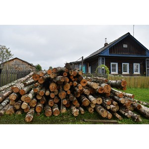 Жители Кировской области получили древесину по льготной цене