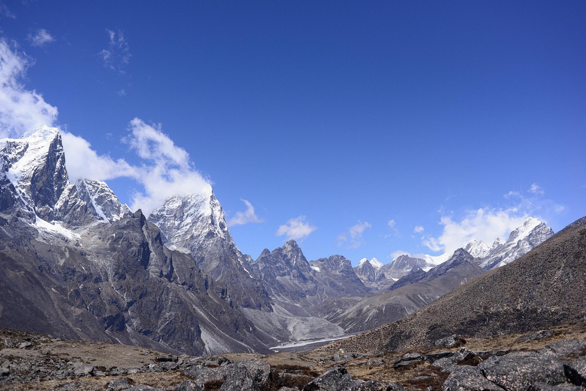 Вид на Кхумбу и Чолаце снизу Ама-Даблам на высоте 4900 м, на переднем плане видна типичная субнивальная растительность. Предоставлено: Карен Андерсон.