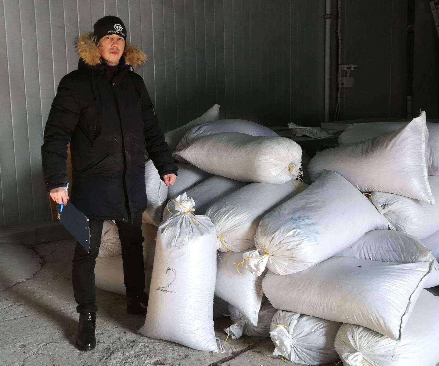 2 тонны семян кедра корейского выданы из федерального фонда