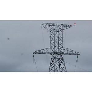 Амурские энергетики готовятся к прилету аистов