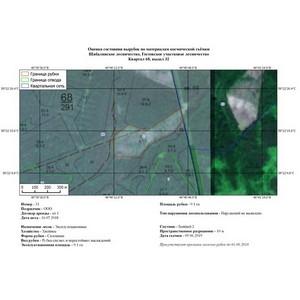 Леса Кировской области мониторят с помощью космической съемки