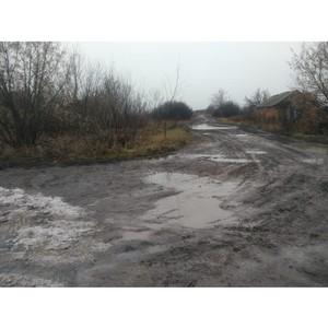 ОНФ призвали власти привести в порядок дороги в воронежском селе