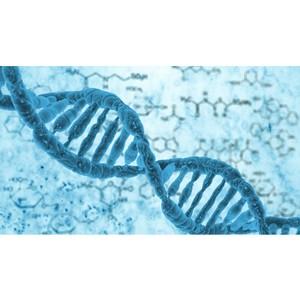 В России создали препарат для персонифицированной генной терапии