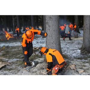 «Идем в лес»: как компания STIHL знакомит  партнеров с новой техникой