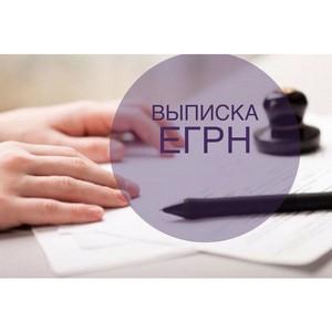 Росреестр Забайкалья: о порядке и способах получения выписки из ЕГРН