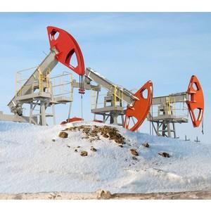 Пакет законопроектов о льготах для инвесторов в Арктике