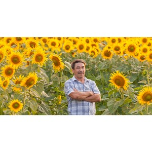 РСХБ назвал сферы продукции АПК с наибольшим вкладом фермеров