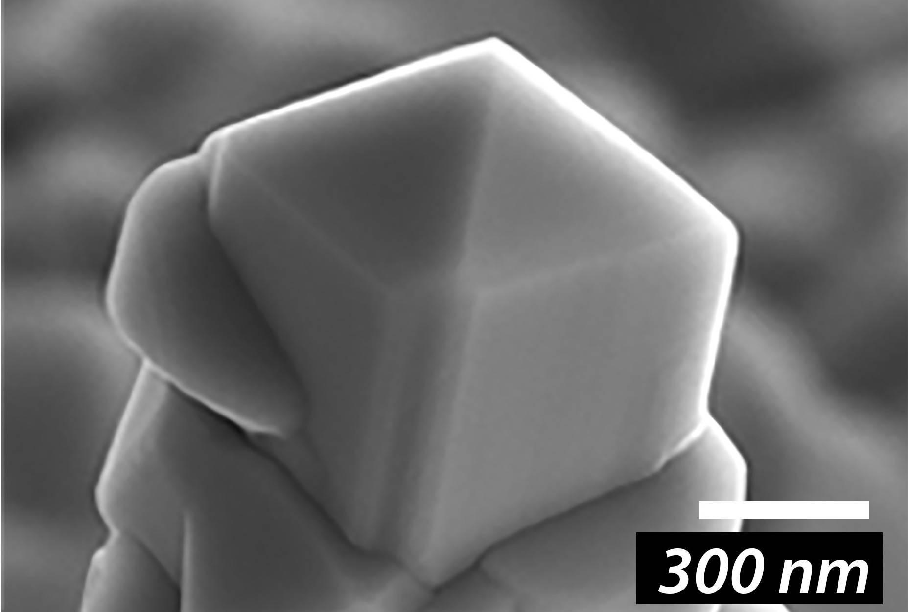 Изображение кремниевой иглы (электронный микроскоп) после синтеза диоксида ванадия. Кремниевая игла с наращённым на ее вершину нанокристаллом диоксида ванадия.Victor Ya. Prinz et.al./Nanoscale, 2020.