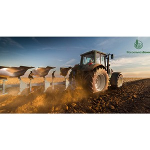 Россельхозбанк на треть увеличил инвестиции в агросектор страны