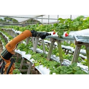 Big data на службе у сельского хозяйства