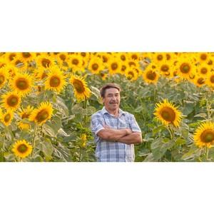 Краснодарский край победил в рейтинге регионов по выручке фермеров