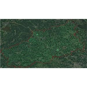 В Тверской области в 2019 году Росреестром обследовано 128 геопунктов
