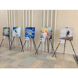 Выставка арт-проекта