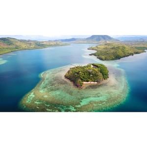 Accenture и Intel спасают коралловые рифы с помощью ИИ