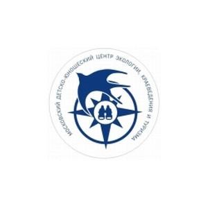 Онлайн-занятие «Отправляемся в водный поход!» 29 апреля в 16:00