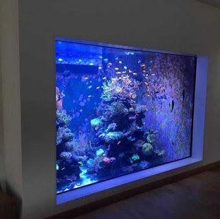 Изготовление аквариума мы возьмем на себя!
