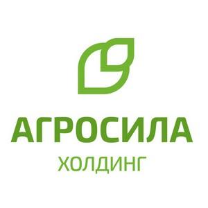 Агросила приступила к ребрендингу фирменной сети