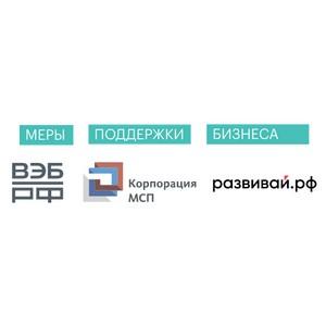 ВЭБ.РФ запустил агрегатор мер антикризисной поддержки предпринимателей