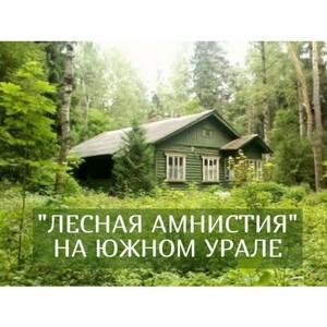 О «лесной амнистии» на Южном Урале