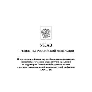 Указ Президента от 28.04.2020 № 294 о продлении мер по обеспечению СЭБ