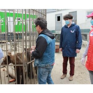 Активисты ОНФ в КБР помогли цирку-шапито в рамках акции #МыВместе